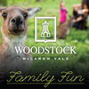 Family Fun at Woodstock Wine Estate image